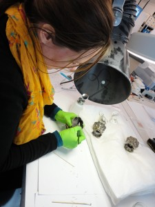 Zilverpoetsen Liefkes objecten RMV